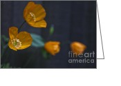 Greens Framed Prints Greeting Cards - Little Welsh Poppies Greeting Card by Michelle Orai