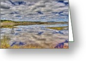 Roger Lewis Greeting Cards - Looking into the Marsh Greeting Card by Roger Lewis