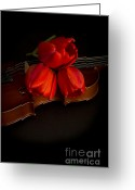 Drapery Greeting Cards - Love and Romance Greeting Card by Edward Fielding
