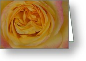 Mick Anderson Greeting Cards - Loves Delicate Details Greeting Card by Mick Anderson