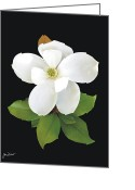 Magnolia Grandiflora Greeting Cards - Magnolia Blossom Greeting Card by Joe Duket