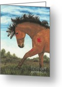 Native Portraits Greeting Cards - Majestic Mustang 36 Greeting Card by AmyLyn Bihrle