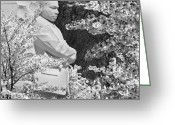 Martin Luther King Greeting Cards - Martin Luther King Memorial through the Blossoms Greeting Card by Mike McGlothlen