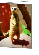 Standing Meerkat Photo Greeting Cards - Meerkat on watch Greeting Card by Amber Nissen