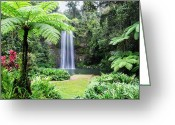 Swimming Hole Greeting Cards - Millaa Millaa Falls Greeting Card by Linda Lees