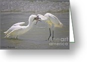 White Morph Greeting Cards - Misfire Greeting Card by Barbara Bowen