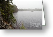 Larry Ricker Greeting Cards - Misty Morning on Snipe Lake Greeting Card by Larry Ricker