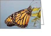 Jimmie Greeting Cards - Monarch Resting Greeting Card by Jimmie Bartlett