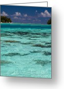 French Polynesia Greeting Cards - Moorea Lagoon No 10 Greeting Card by David Smith