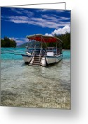 French Polynesia Greeting Cards - Moorea Lagoon No 13 Greeting Card by David Smith