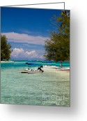 French Polynesia Greeting Cards - Moorea Lagoon No 14 Greeting Card by David Smith