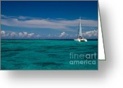 Pacific Ocean Photo Greeting Cards - Moorea Lagoon No 16 Greeting Card by David Smith