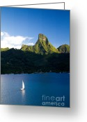 French Polynesia Greeting Cards - Moorea Lagoon No 20 Greeting Card by David Smith