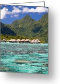 French Polynesia Greeting Cards - Moorea Lagoon No 3 Greeting Card by David Smith