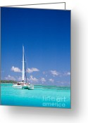 French Polynesia Greeting Cards - Moorea Lagoon No 4 Greeting Card by David Smith