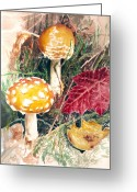 Storybook Greeting Cards - Mushrooms Greeting Card by Sonja Funnell