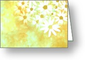 Floral Abstracts Greeting Cards - nature - flowers- White Daisies -floral art Greeting Card by Ann Powell