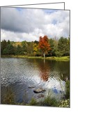 Fall Colors Greeting Cards - October Brisk Greeting Card by Christina Rollo