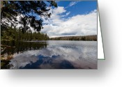 Andreas Levi Greeting Cards - Oderteich Greeting Card by Andreas Levi