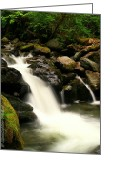 Christopher Fridley Greeting Cards - OToole Creek Greeting Card by Christopher Fridley