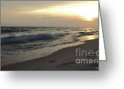 Panama City Beach Greeting Cards - Panama City Beach Golden Sunset Greeting Card by Debra Forand
