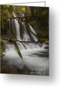 Lichen Image Greeting Cards - Panther Creek Falls Washington Greeting Card by Keith Kapple