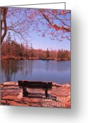 Park Benches Greeting Cards - Park Bench in Spring Greeting Card by John Malone