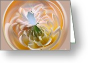 Beige Wall Art Greeting Cards - Pastel Dahlia Orb Greeting Card by Kaye Menner
