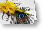 Turquoise And Brown Greeting Cards - Peacock Feather and Gladiola 5 Greeting Card by Sarah Loft