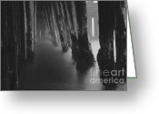 Paul Topp Greeting Cards - Pillars and Fog 1 Greeting Card by Paul Topp
