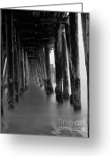 Paul Topp Greeting Cards - Pillars and Fog 2 Greeting Card by Paul Topp