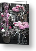 Garden Pots Greeting Cards - Pink flower arrangements Greeting Card by Elena Elisseeva