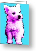 Terriers Greeting Cards - Pink Westie - West Highland Terrier Art by Sharon Cummings Greeting Card by Sharon Cummings
