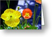 Watercolor Flowers Prints Greeting Cards - Poppy series - Soaking up Sunbeams Greeting Card by Moon Stumpp