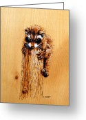 Cute Pyrography Greeting Cards - Raccoon Greeting Card by Ron Haist