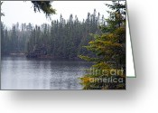 Larry Ricker Greeting Cards - Rainy Morning on Snipe Lake Greeting Card by Larry Ricker