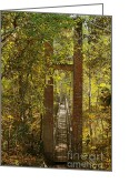 Paths Greeting Cards - Ravine Gardens State Park in Palatka FL Greeting Card by Christine Till