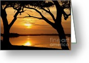 Wiles Greeting Cards - Reach For Me Greeting Card by Karen Wiles