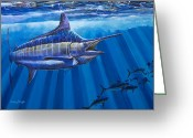 Marlin Azul Greeting Cards - Record Greeting Card by Carey Chen