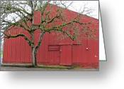 Elizabeth Rose Greeting Cards - Red barn and green tree in Dundee Hills Oregon Wine Country Greeting Card by Elizabeth Rose