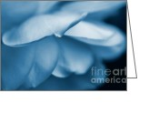 Blue Florals Greeting Cards - Rose Flower Petals Blue Greeting Card by Jennie Marie Schell