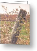 Cottage Chic Greeting Cards - Rustic Dream Greeting Card by Gary Heller
