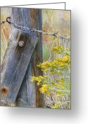 Barbed Wire Fences Photo Greeting Cards - Rustic Fence and Wild Flowers Greeting Card by Jennie Marie Schell
