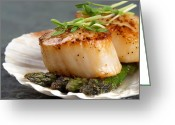 Shellfish Greeting Cards - Seared scallops Greeting Card by Jane Rix