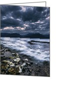 Kitsap Peninsula Greeting Cards - Seashells by the Seashore Greeting Card by Ryan Manuel