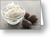 Cosmetics Greeting Cards - Shea butter and nuts  Greeting Card by Elena Elisseeva