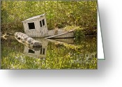 Dilapidated Greeting Cards - Shipwreck Silver Springs Florida Greeting Card by Christine Till