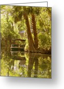 Water Reflections Greeting Cards - Silver Springs Glass Bottom Boats Greeting Card by Christine Till