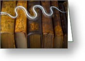 Snakes Greeting Cards - Snake and antique books Greeting Card by Garry Gay