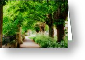Country Lanes Photo Greeting Cards - Softly Dreaming Greeting Card by Marilyn Wilson